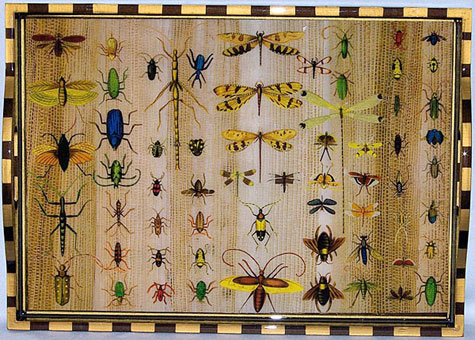 Bug Tray-Weiland Industries